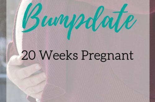 20 weeks pregnant