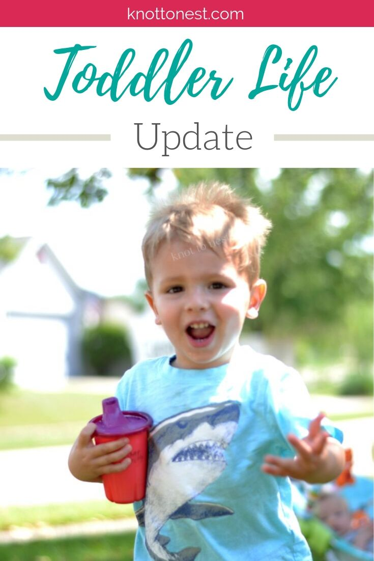 Toddler Life Update
