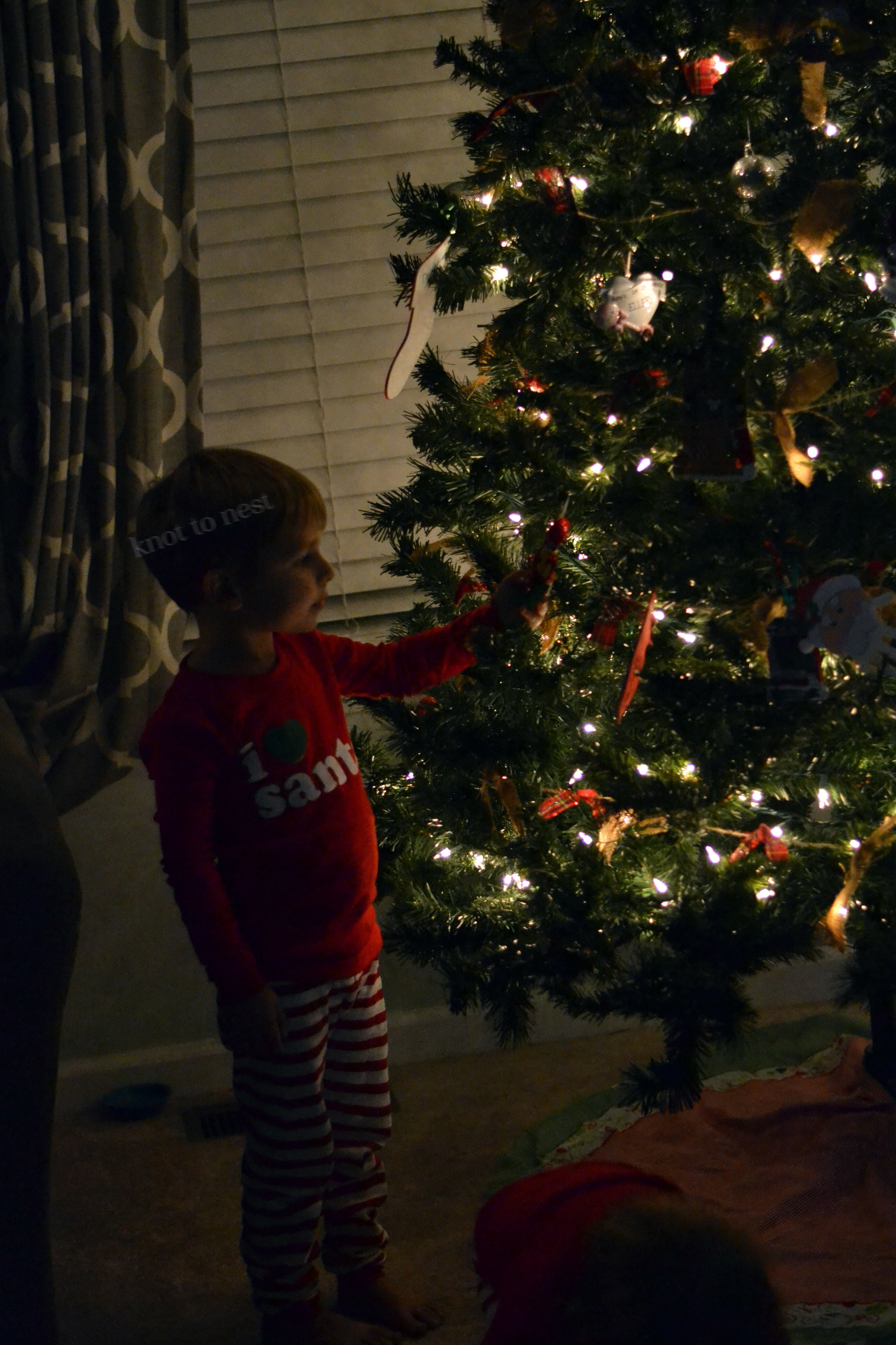 The magic of the Christmas tree through a child's eyes.