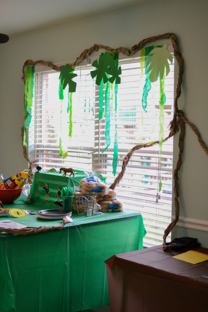 Wild Kratts Birthday party ideas