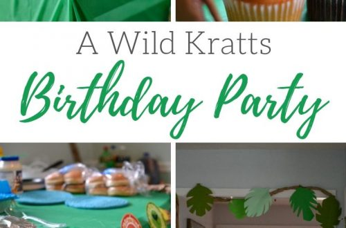 Wild Kratts themed birthday party ideas